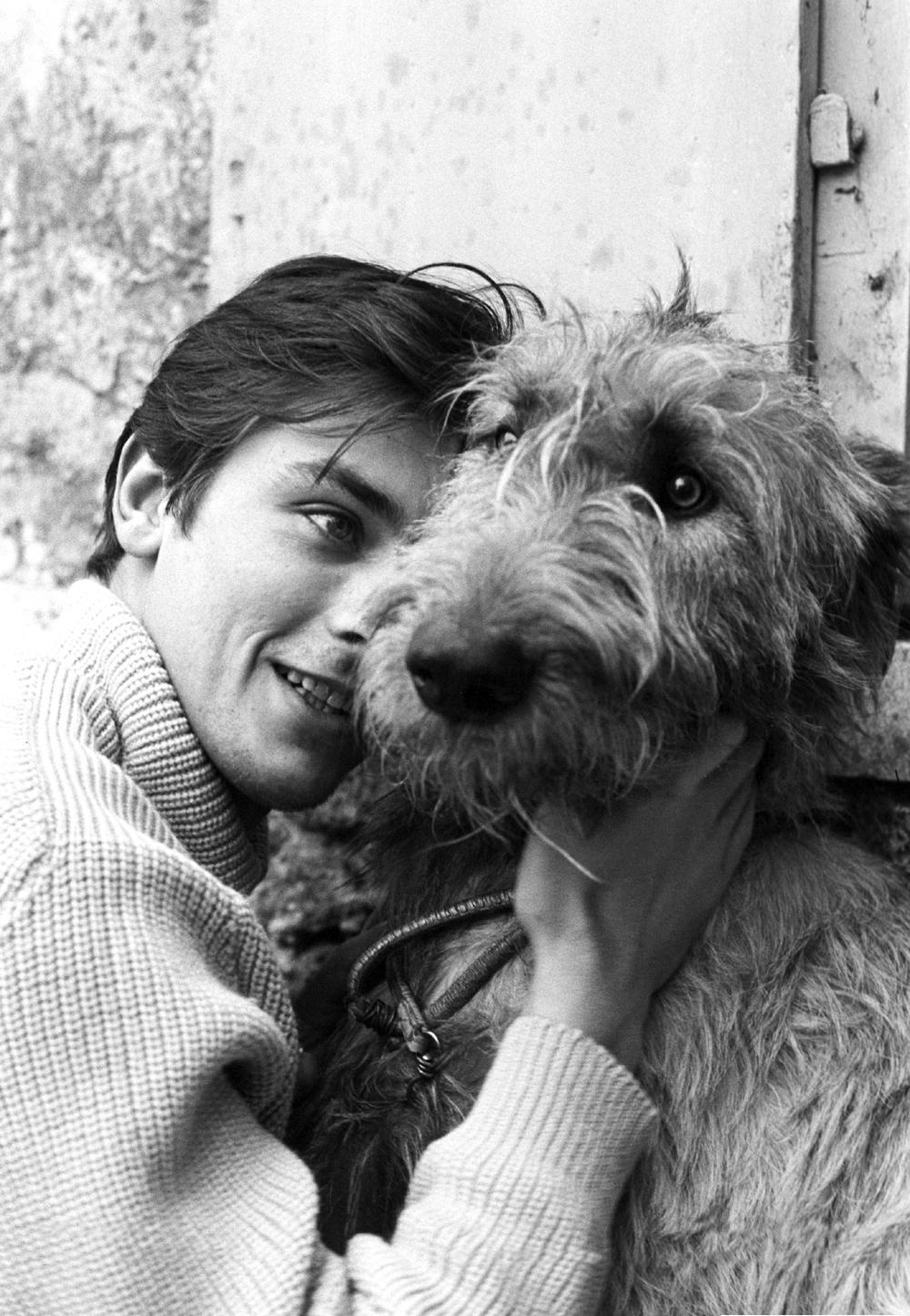 Alain Delon photo #371558