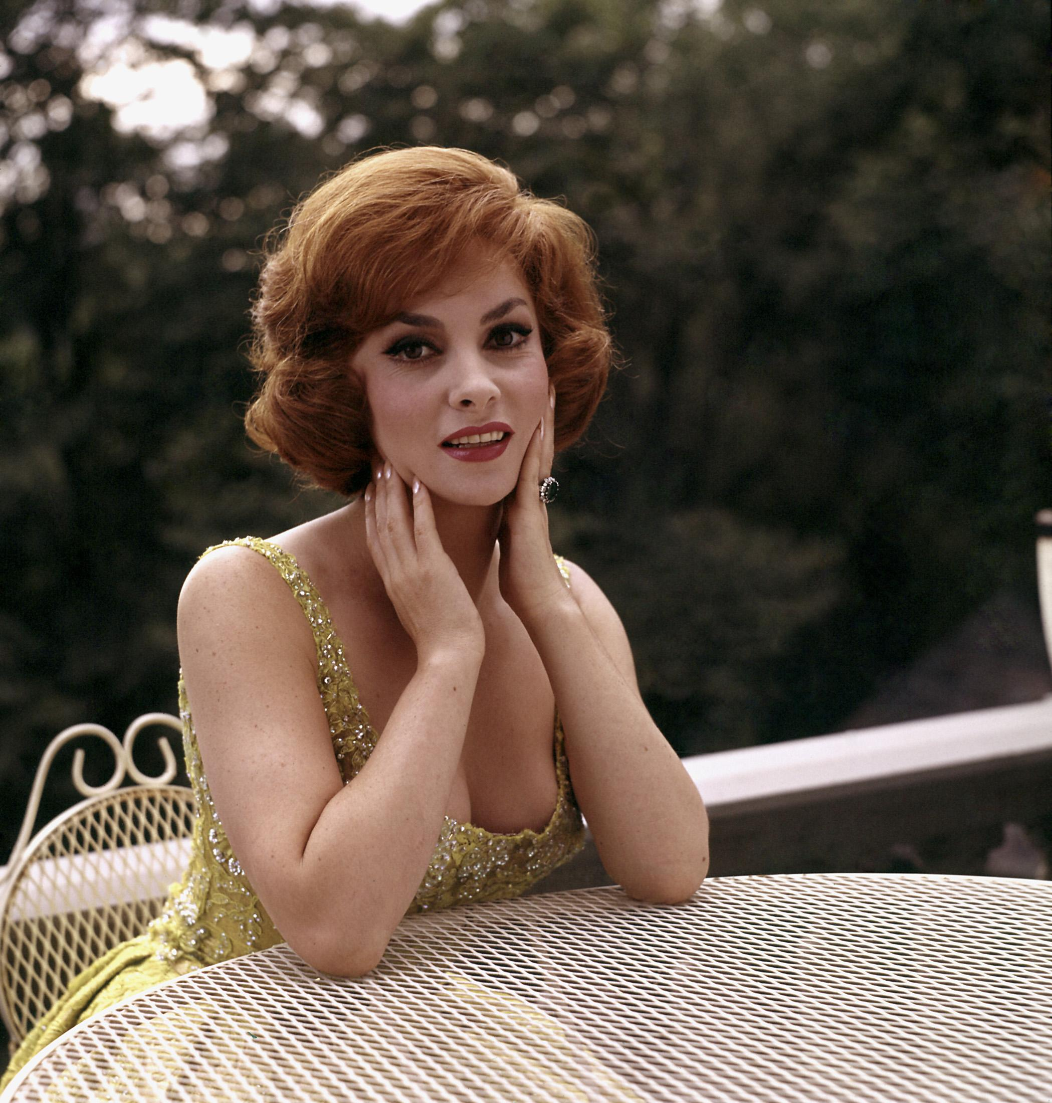 Gina Lollobrigida photo #139176