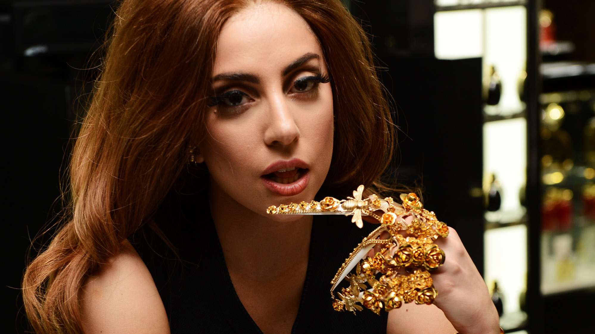 Lady Gaga photo #446180