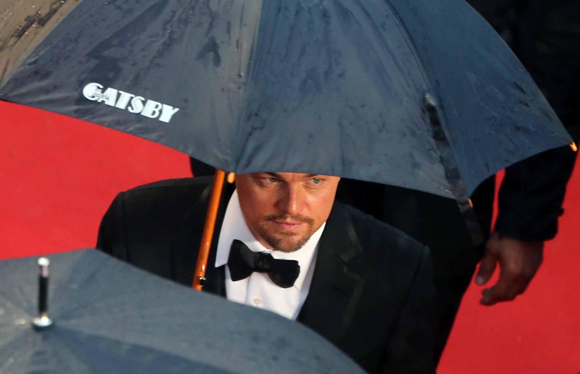 Leonardo DiCaprio photo #721647