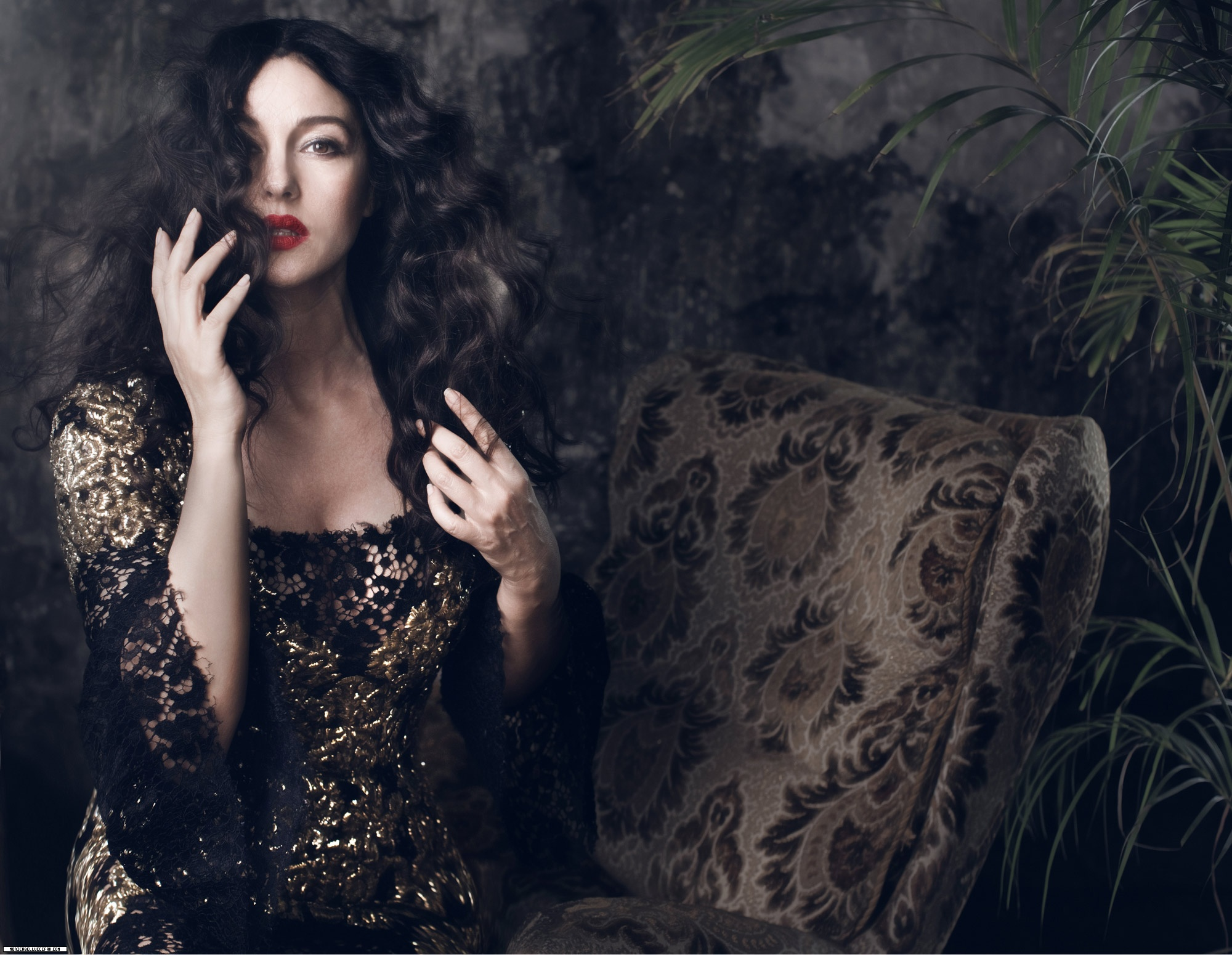 Monica Bellucci photo #509028
