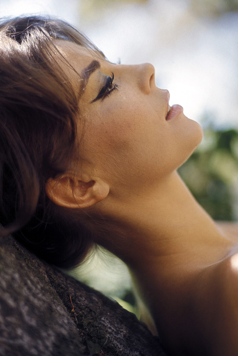Natalie Wood photo #47992