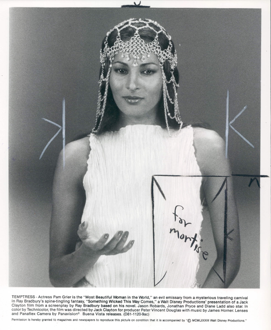 Opinion you pam grier photo gallery