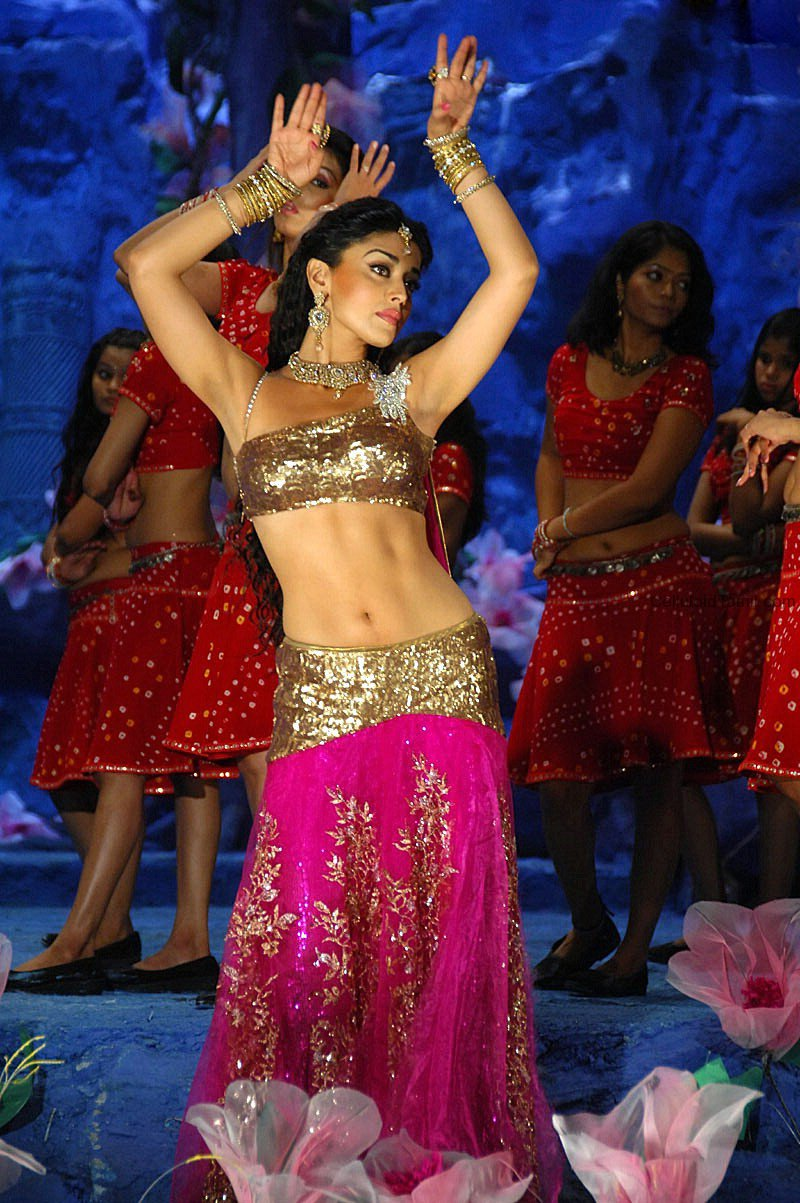 Shriya Saran photo #344457