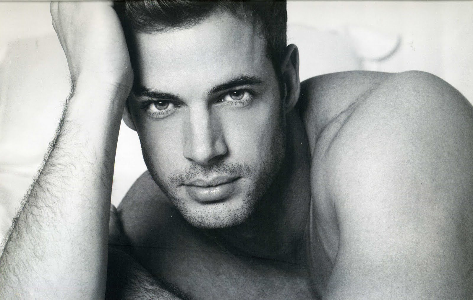 William Levy photo #352089