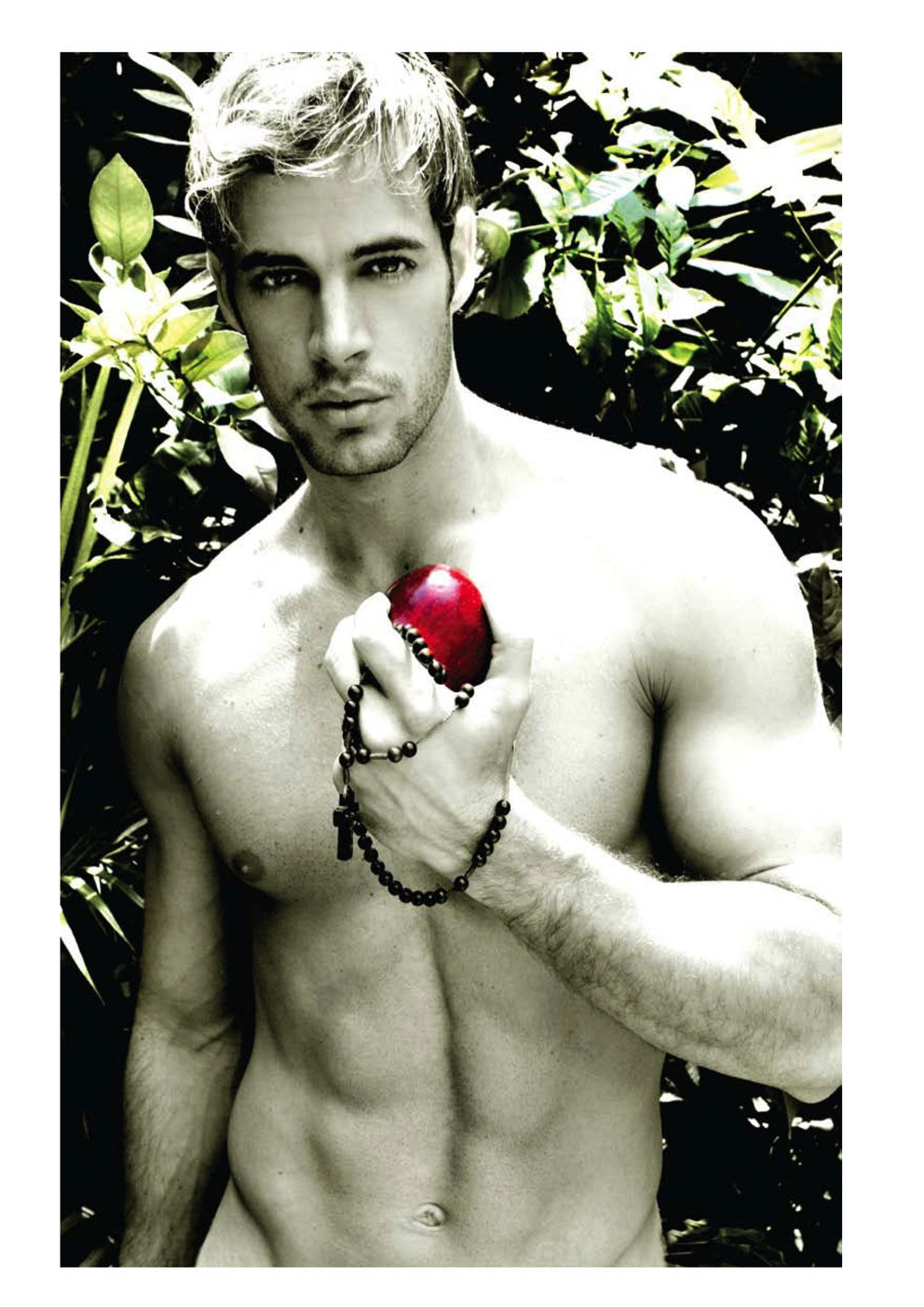 William Levy photo #445924